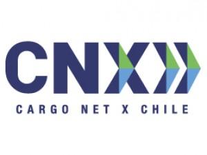 CNX - PLAGASUR® | Control de Plagas en Puerto Montt - Puerto Varas - Osorno - Castro