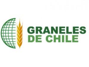 Graneles de Chile - PLAGASUR® | Control de Plagas en Puerto Montt - Puerto Varas - Osorno - Castro