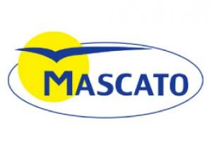 Mascato - PLAGASUR® | Control de Plagas en Puerto Montt - Puerto Varas - Osorno - Castro