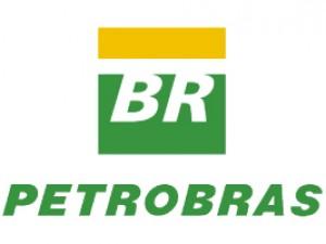 Petrobras - PLAGASUR® | Control de Plagas en Puerto Montt - Puerto Varas - Osorno - Castro