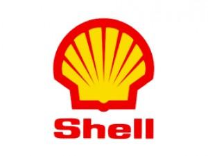 Shell - PLAGASUR® | Control de Plagas en Puerto Montt - Puerto Varas - Osorno - Castro