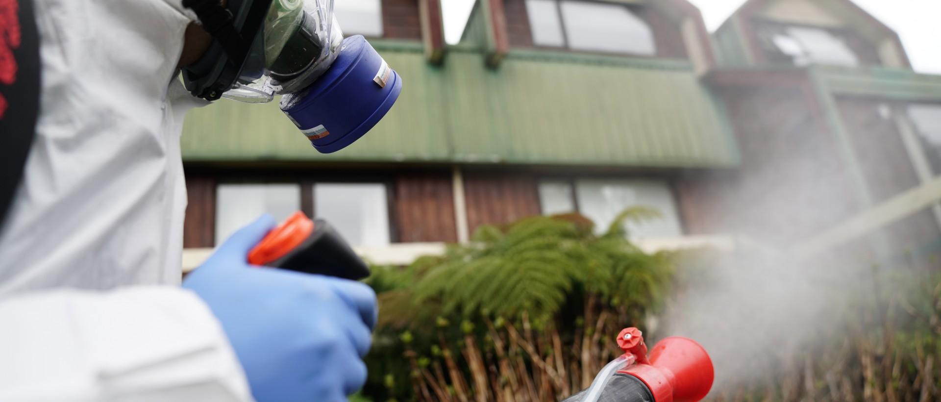PLAGASUR® | Porque es tu casa y NO la de ellos! | Sanitización · Desratización · Desinsectación · Control de palomas y murciélagos · Valdivia - Puerto Montt - Puerto Varas - Osorno - Castro | Desinsectación