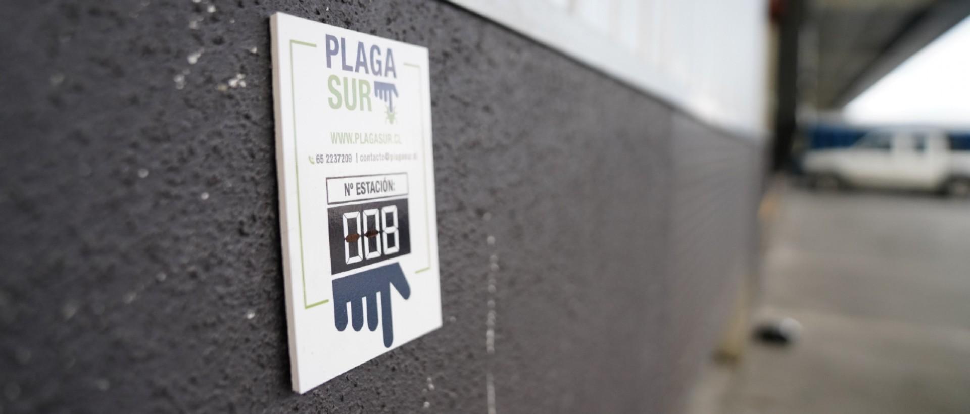 PLAGASUR® | Porque es tu casa y NO la de ellos! | Sanitización · Desratización · Desinsectación · Control de palomas y murciélagos · Valdivia - Puerto Montt - Puerto Varas - Osorno - Castro | Desratización