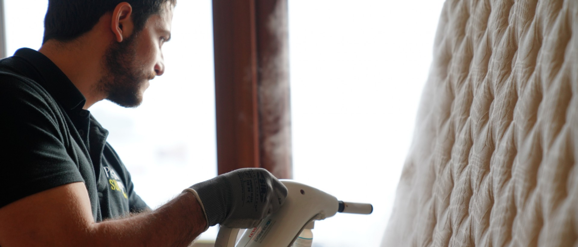 PLAGASUR® | Porque es tu casa y NO la de ellos! | Sanitización · Desratización · Desinsectación · Control de palomas y murciélagos · Valdivia - Puerto Montt - Puerto Varas - Osorno - Castro | Erradicación de chinches de cama