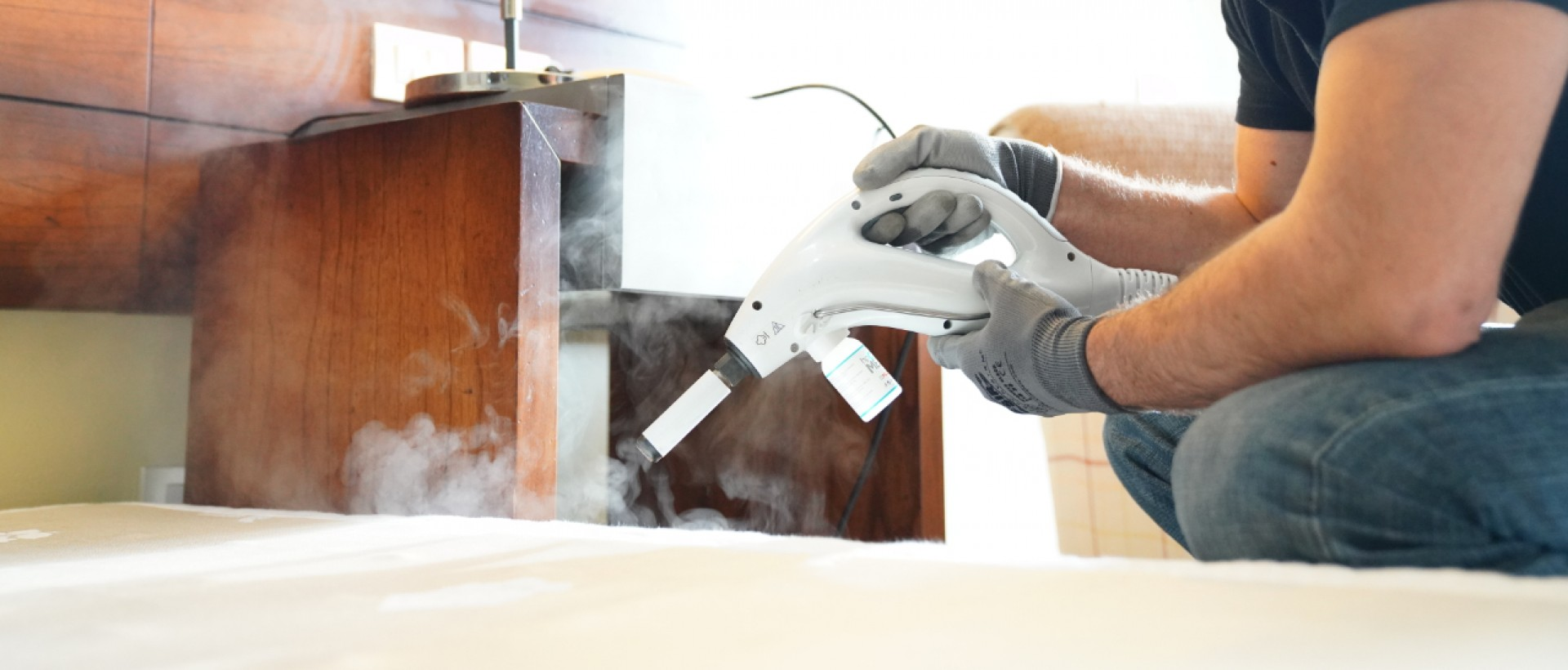 PLAGASUR® | Control de Plagas en Puerto Montt - Puerto Varas - Osorno - Castro | Limpieza y desinfección