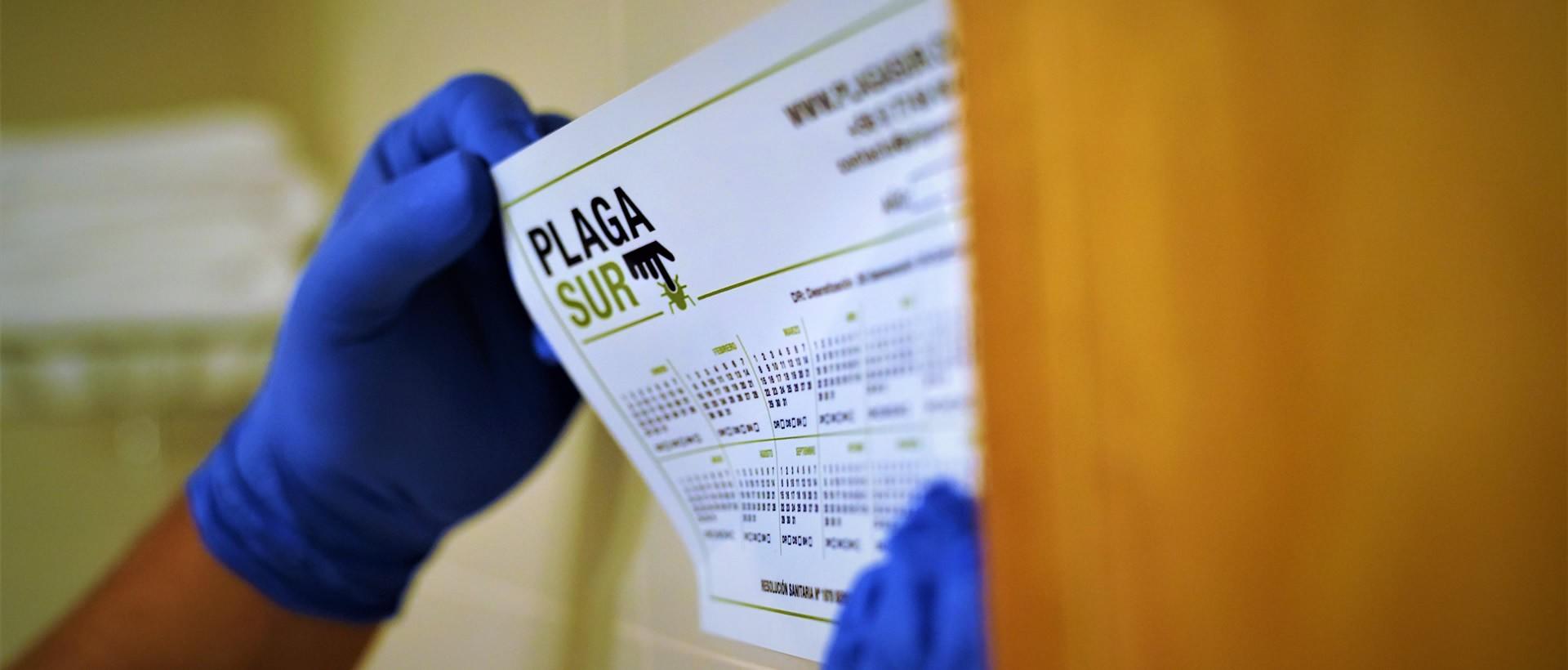 - PLAGASUR® | Control de Plagas en Puerto Montt - Puerto Varas - Osorno - Castro