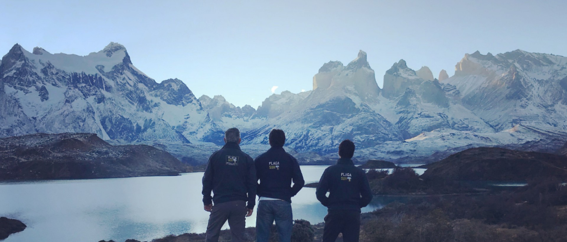 Somos - PLAGASUR® | Control de Plagas en Puerto Montt - Puerto Varas - Osorno - Castro